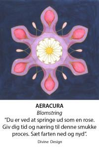 Aeracura